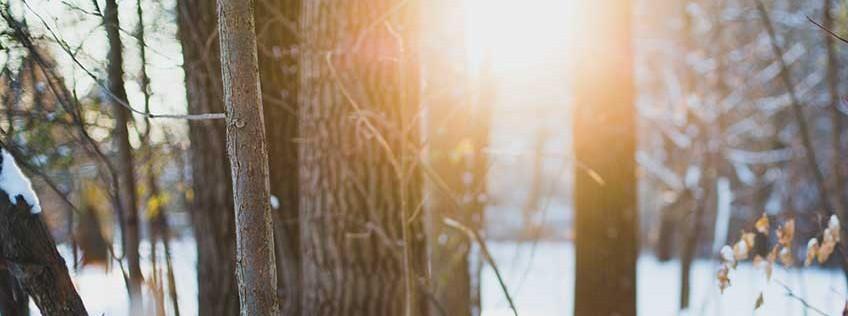 4 habitudes à adopter pour un mieux-être confiné